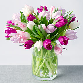PRODUCT_FLOWERS_Spring_Tulips_Large_image1_320x320