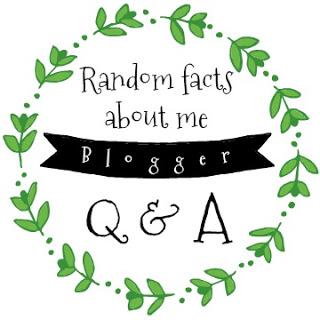 blogger q&a