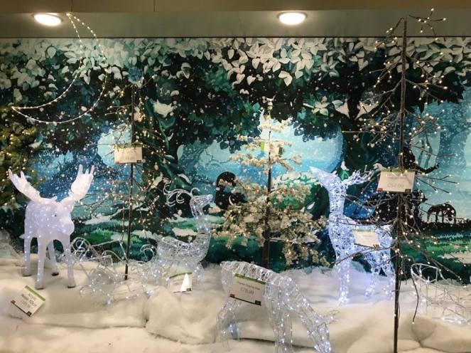 festivefeel